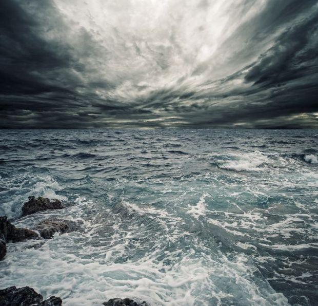 Swim Away Into Oblivion