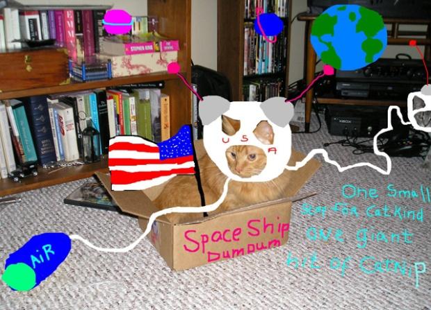 astro_cat