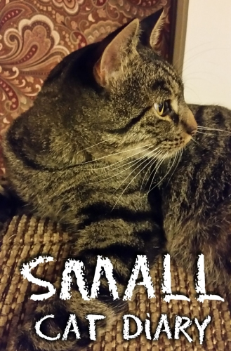 Small Cat Diary with cat photo